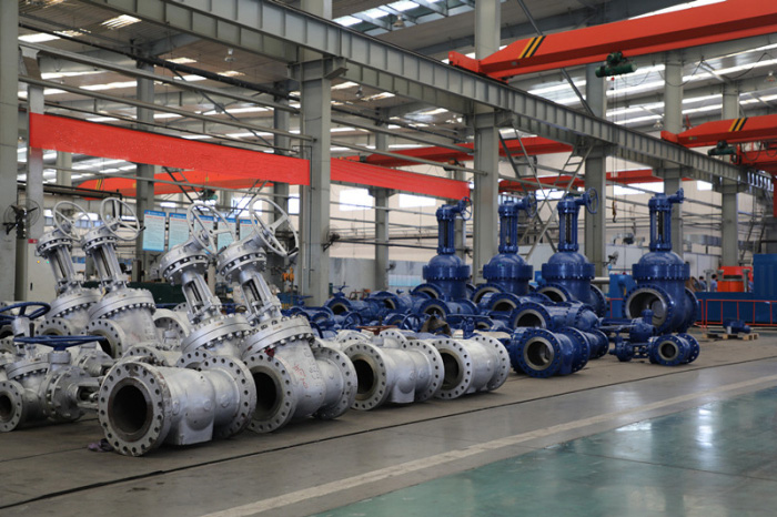 Xian Pump and Valve plant Co Ltd